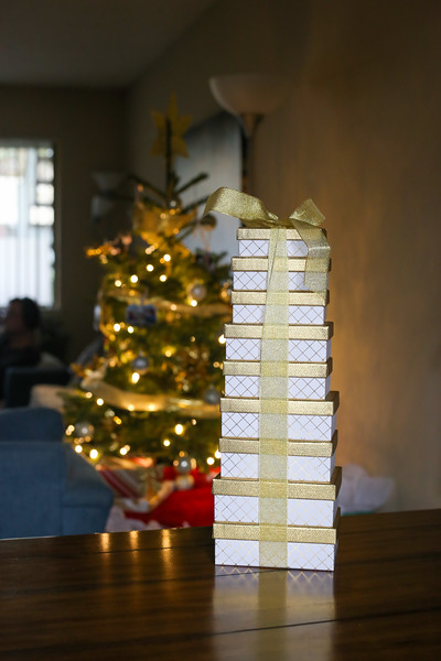 2019-12-22_ChristmasDecor-4416.jpg
