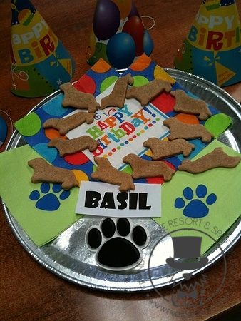 Doggy Birthday Parties