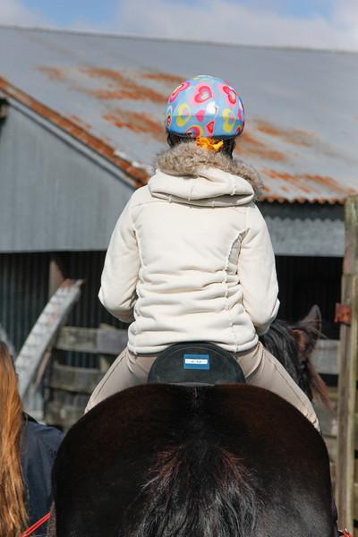 SIRE Ride-a-thon 2013-6262.jpg