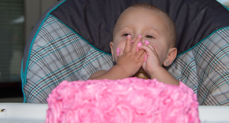 Lila's 1st Bday Party-202.jpg