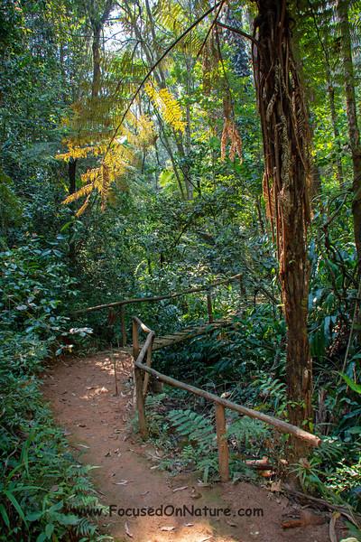 Vakona Trail