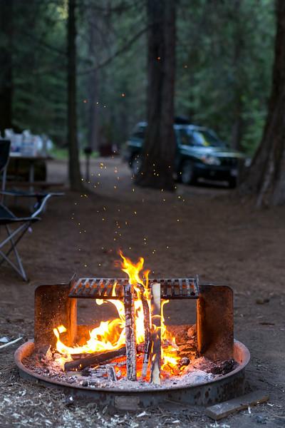 Sequoia_0723.jpg