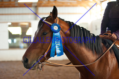 Western Equitation Pattern  110724