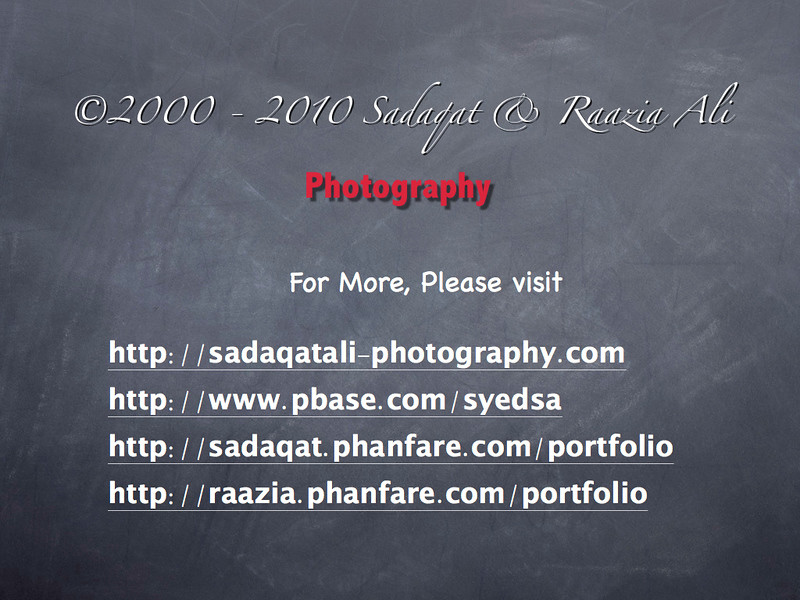 Photography-Marketing-Slide.001.jpg