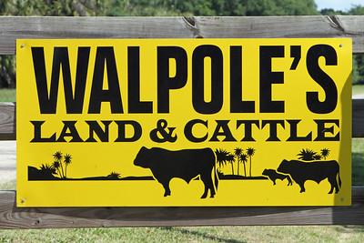 Walpole Feed