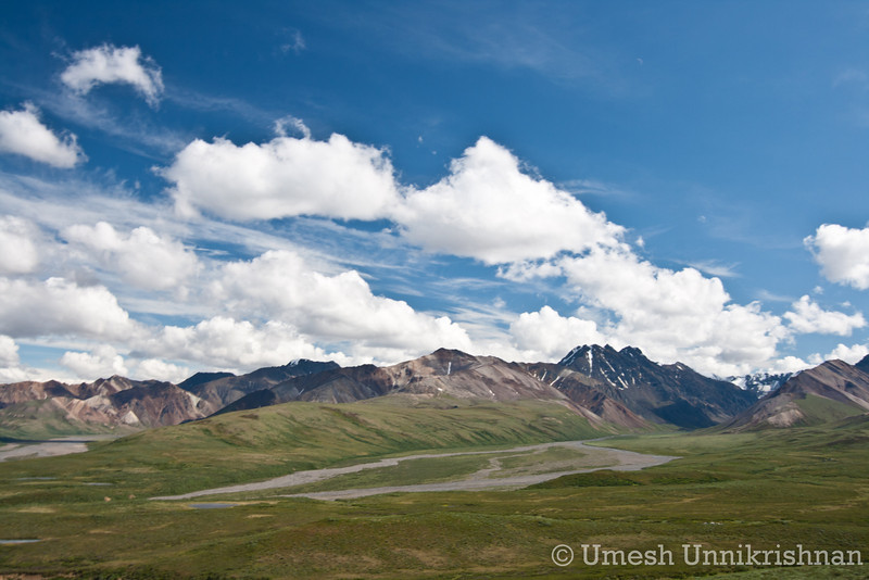 Denali National Park 160.jpg