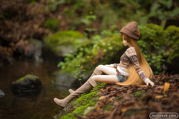 Forest Mirai - 160313