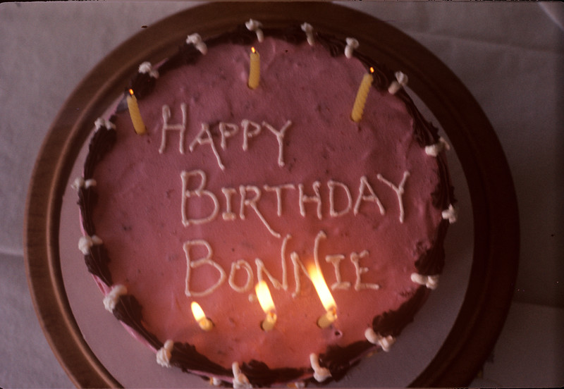 1976-01 Bonnie's Sixth Birthday Cake.jpg