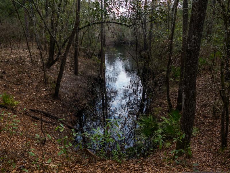 02-19-2049 River Trail Oleno (45 of 68).jpg