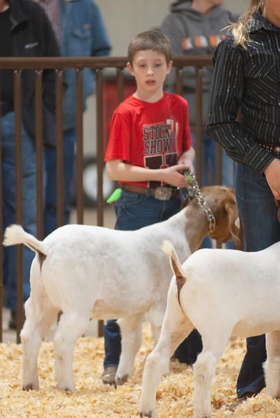 kay_county_showdown_goats_20191207-62.jpg