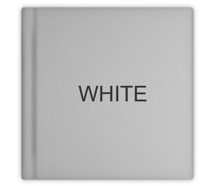 022 White.png