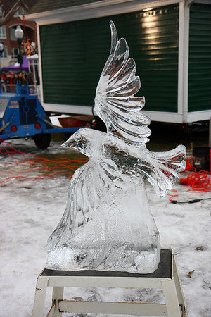 Plymouth Ice Festival 2010