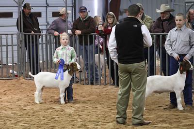 2012 Livestock Show