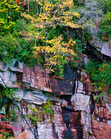 Talluah Gorge
