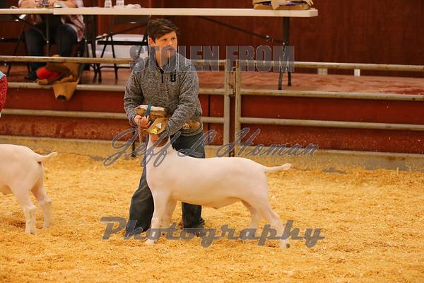 2018 Smith County Livestock Show