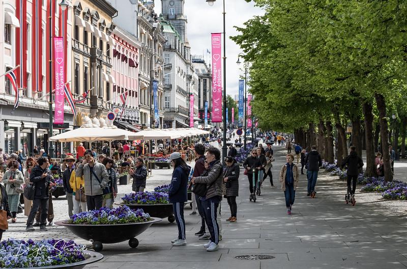 Karl Johans Gate, a busy pedestrian shopping street