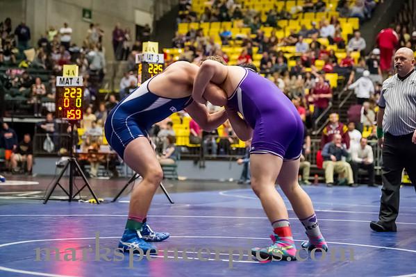 Wrestling State 2013