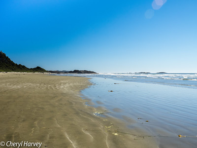 Vancouver Island Images