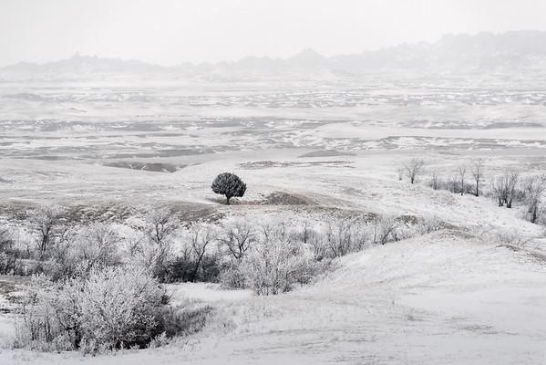 Badlands, Winter