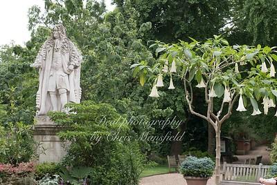 June 7th 2018 Chelsea Psysic garden