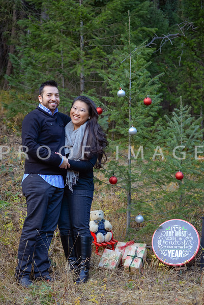 Rameen and Bethany's Holiday Card Session
