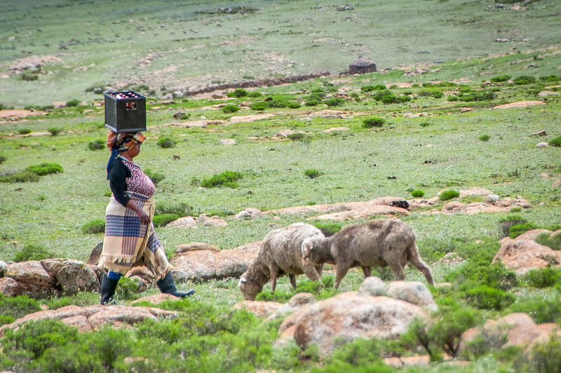 Woman in the Sani Pass, Lesotho