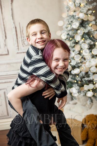 Larson Family Mini 2020