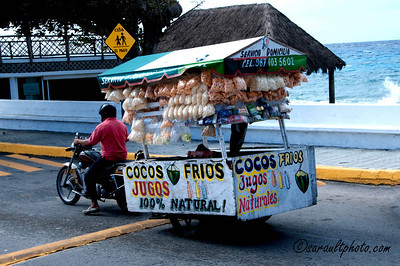 Mexique | Xcaret | Mexico
