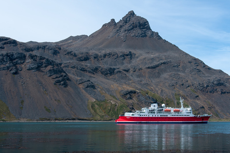 M/S Expedition in Grytviken, South Georgia Island