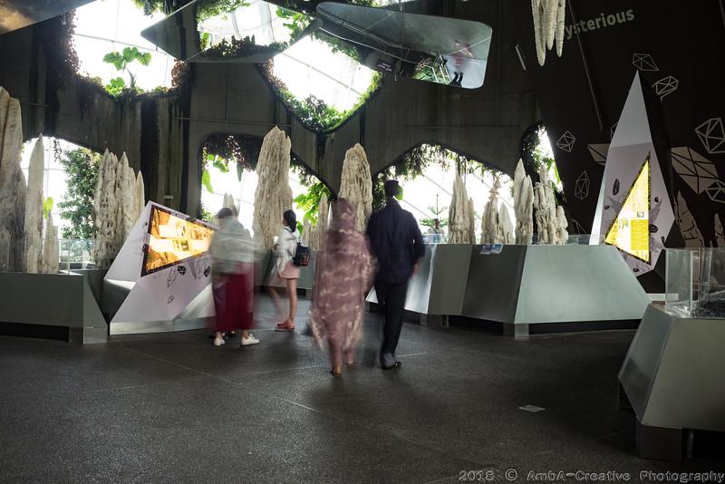 2018-07-18_FunWithFamily@GardensByTheBay_SingaporeSG_50.JPG