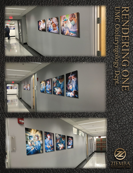Rendering of Otolaryngology Hallway of chosen images prior to physical installation. This helps clients either visual what the finished gallery will look like in the space or help decide prior to install which sequence the images look best.