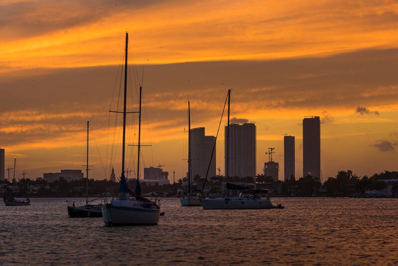 Miami-89.jpg
