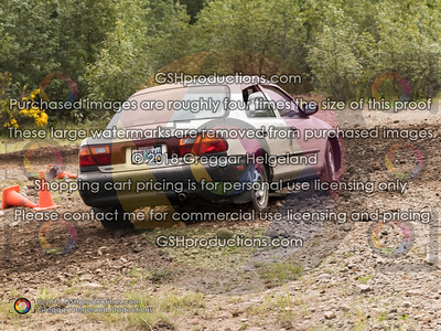 45 Goldish Protege Sedan DAH Bickmore
