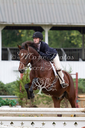 Young Entry Equitation