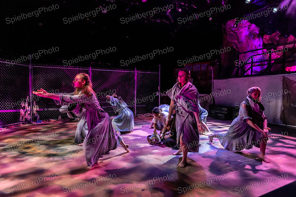Images 1201 - 1342