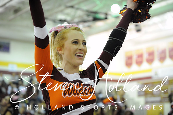 Cheer: Broad Run Believe in a Cure - Wildcats 10.17.2015 (by Steven Holland)