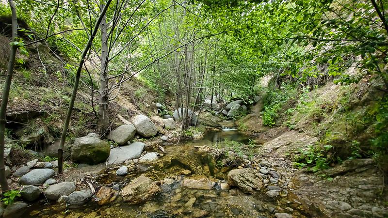 20190621206-Switzer Falls, Bear Canyon.jpg