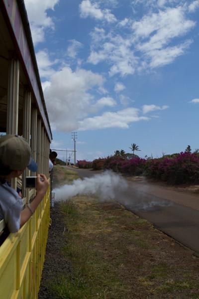 Hawaii2012-3474.jpg