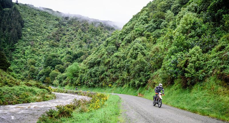 2019 KTM New Zealand Adventure Rallye (82).jpg