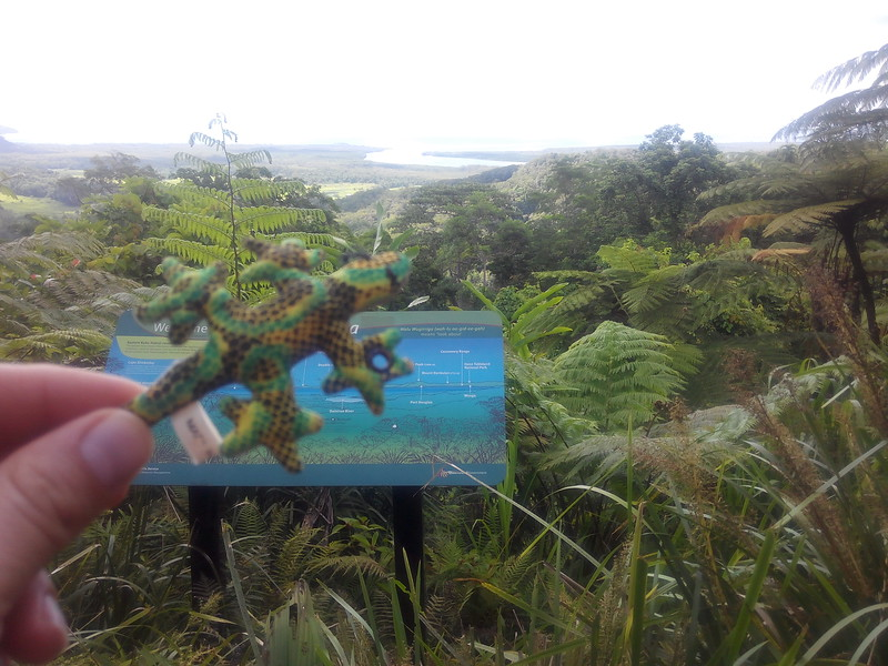 Prehistoric rain forest? Coral reef? Both together?! Yep! Sammy has made it to where the Daintree Rain Forest and the Great Barrier Reef meet.
