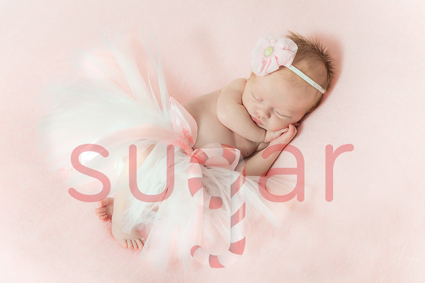 Matilda's Newborn Photoshoot