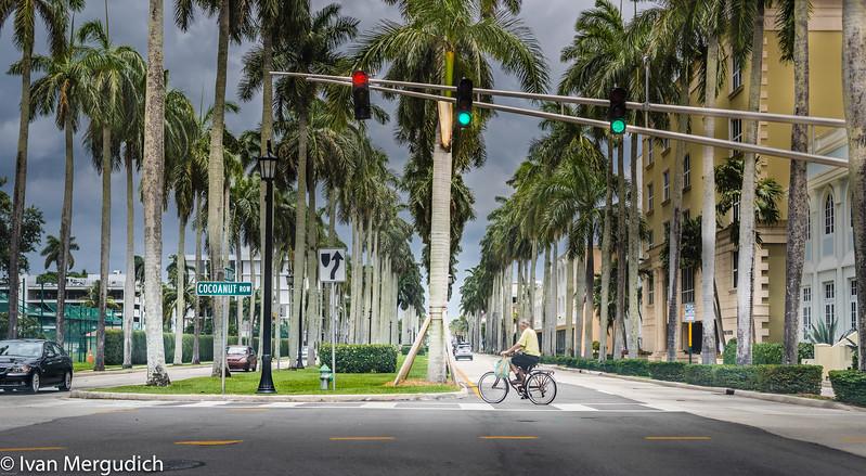 Palm Beach-14.jpg
