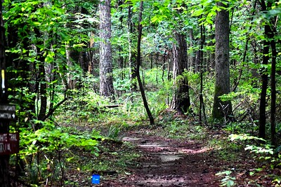 Southeastern Trail Runs Memorial Day Trail race May 2020