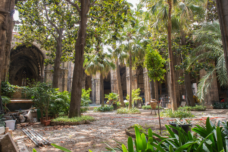 Barcelona Cathedral Gardens