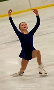 Ice Skate Show