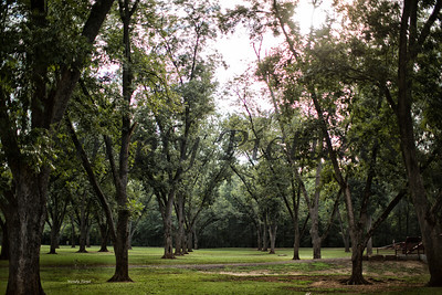 Banita Creek  (8)