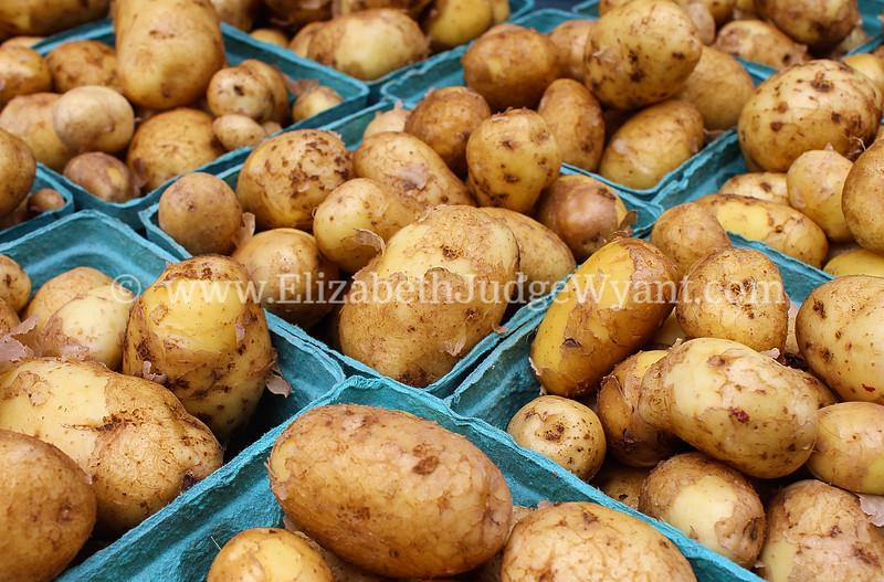 Potatoes  Easton Farmers' Market, 7/19/2014