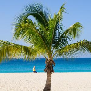 Caribbean 08