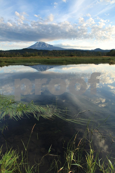Mt. Adams is reflected in Trout Lake at sunrise near Trout Lake, WA.