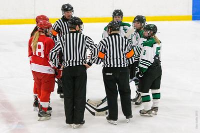 2013-12-07 LDC Girls Hockey